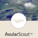 avular-scout