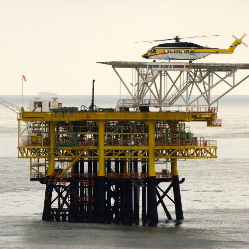 Bird Control Group partners with Total to repel birds from oilrigs