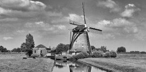 Startup Almere, a startup ecosystem in Flevoland