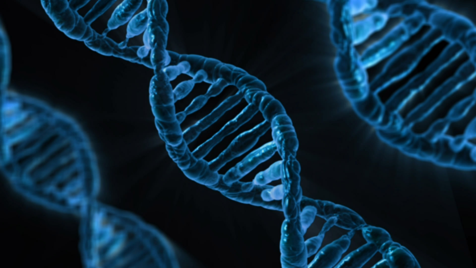 DNA analytics startup Bluebee raises €10M series A round