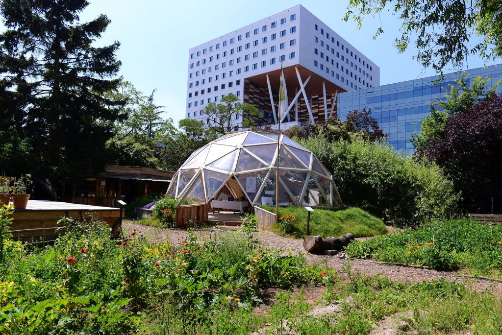 Outdoor workspaces: urban green