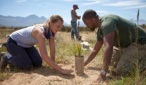 Land Life Company raises 2.4 million euro series A round