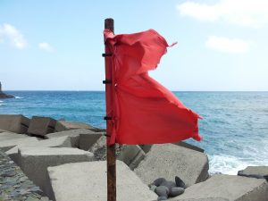 Startup due diligence: how to spot red flags – part 2