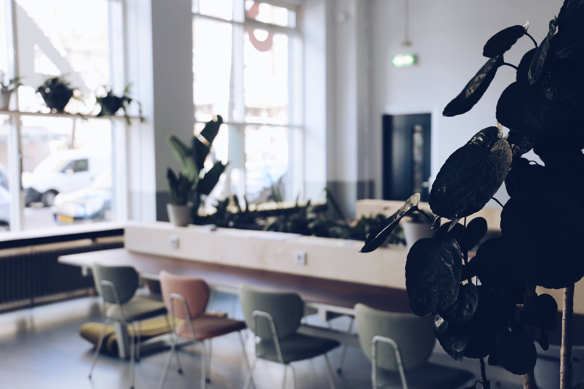 42workspace: first tech startup hub in Rotterdam